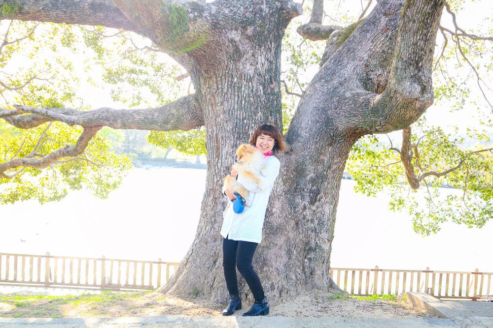大きな木とくぼちー